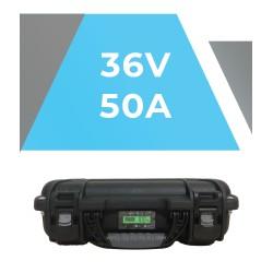 SH Lithium 36v 50A